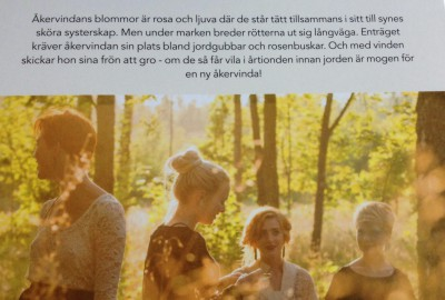 """Ur skivomslaget till Åkervindas """"Kära mor"""""""